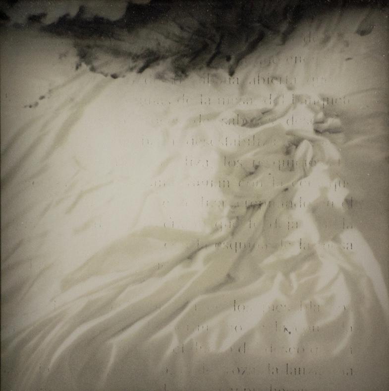 Serie Deseo - Fotografía Analógica y Electrografía - Fabiola Ubani